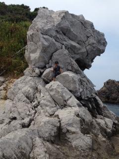 虎に見える岩