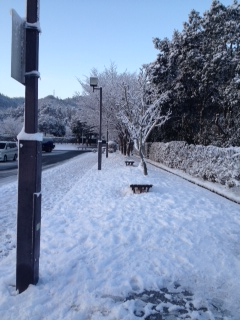 広島の雪景色